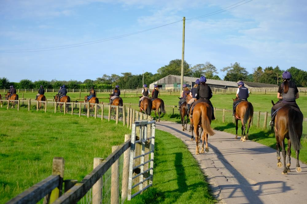 Heading back up the drive to the yard after first lot